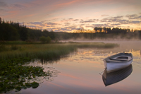 Loch Rusky Dark morning light