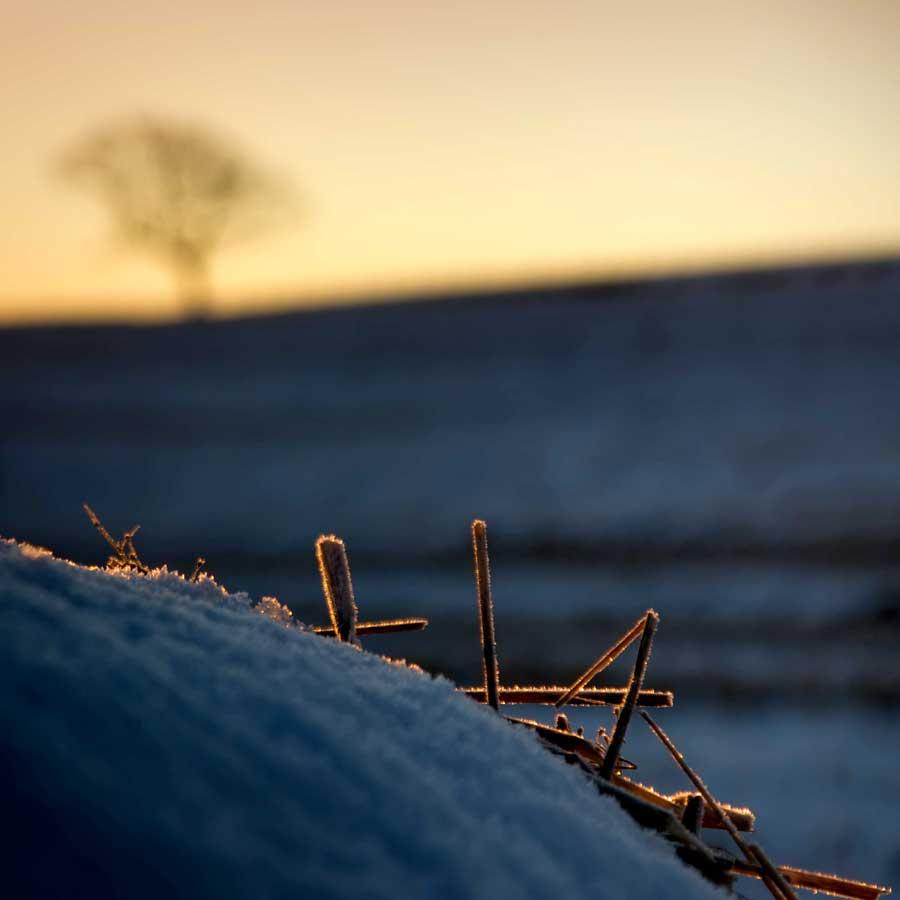 Winter bale